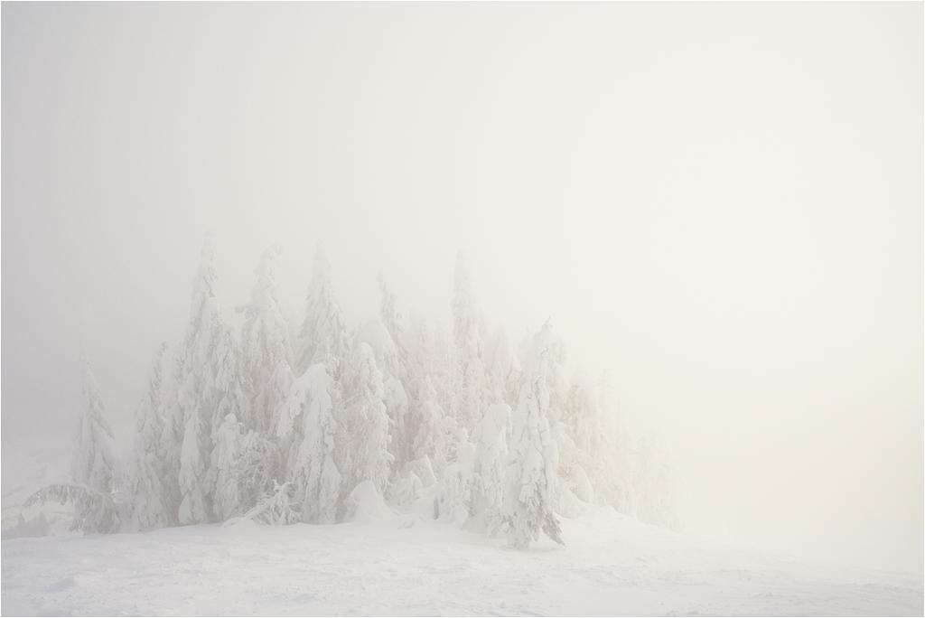Карпатский пейзаж #5