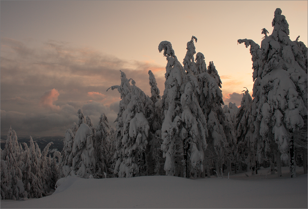 Карпатский пейзаж #6
