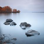 Autumn metamorphosis